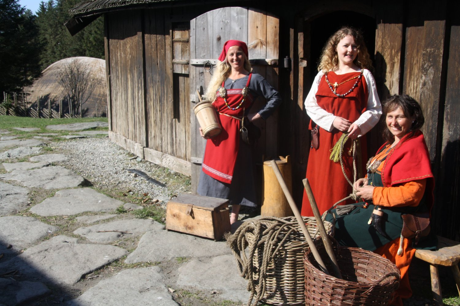 Picture of Viking Lifestyle